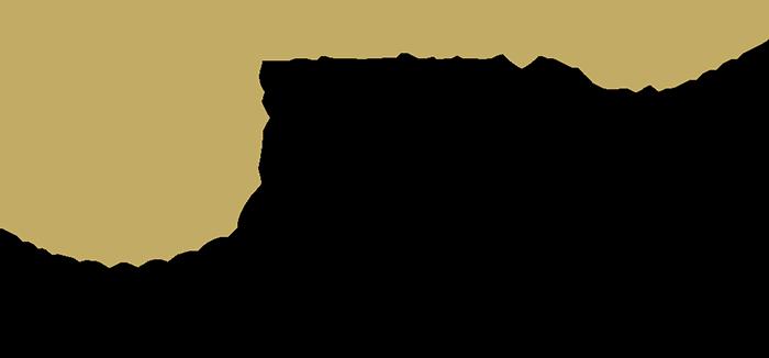 LASEC Los Angeles Sports & Entertainment Commission Logo